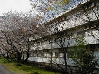 タマエスティ国際学生会館