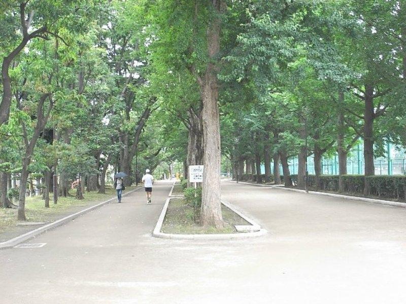 野球場やテニスコートも揃っている緑豊かな公園「羽根木公園」をはじめ、世田谷区は緑あふれる住宅街